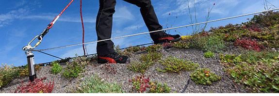 An ABS Seilsicherungssystem gesicherte Arbeiterin auf Steildach